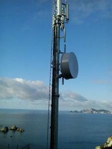 Antenna Lucia Rosa