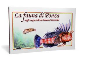 Fauna S.Mazzella copia