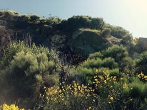 Altri massi della cava