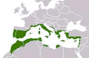 Areale di distribuzione della macchia mediterranea