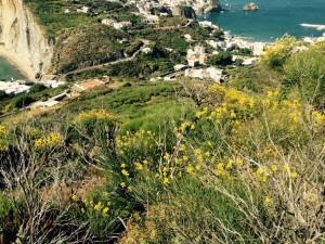 Dal sito della cava. Vista sui due versanti