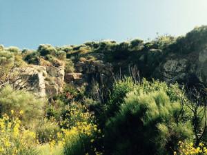 Le rocce della vecchia cava
