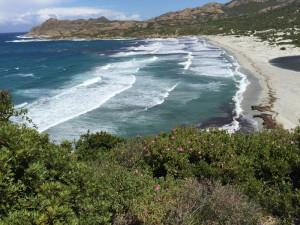 Spiaggia alle Agriates
