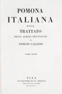 Pomoma italiana di Giorgio Gallesio. 1817