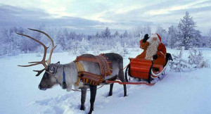 Renna con slitta e Babbo Natale