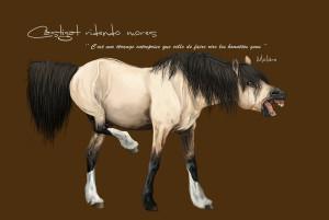 Castigat ridendo mores. Molière. Cavallo