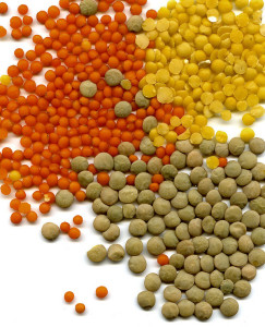 Varie tipologia di lenticchie
