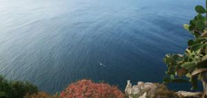 Ventotene. Sul mare