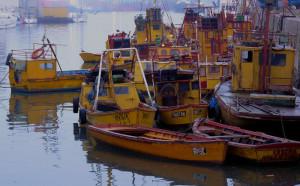 Barcos en la mañana