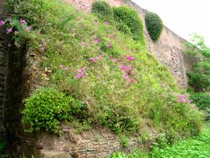 Mura romane a Viale Castrense