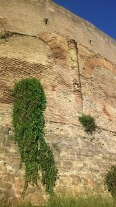 Mura romane nei pressi di Viale Castrense
