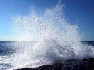 Vento e mare di grecale