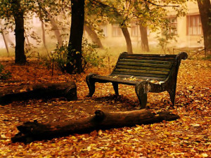 autunno.2. Bench