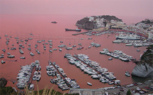 Ponza in rosa (foto da Flickr)