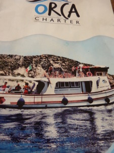 Boat charter Orca