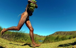 Maratoneta etiope