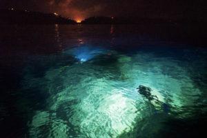 Luce subacquea in prossimità della costa. Foto da radioluna.it