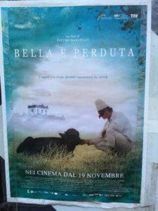 Manifesto del film affisso sul muro all'esterno del complesso