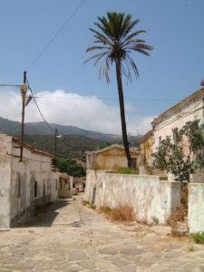 Strada_dell'isola_dell'Asinara