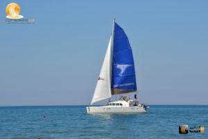 Catamarano del Consorzio CBill