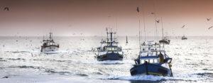 Flotta peschereccia