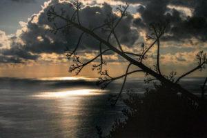 foto 2 di Teresa Rotondo