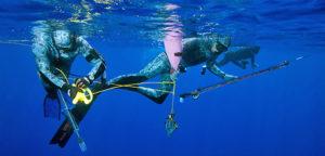 pesca subacuea. Foto da h24notizie.com