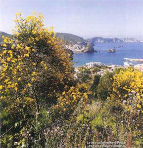 Foto dal Belvedere