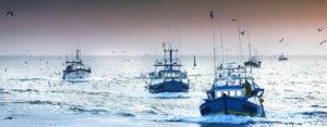 flotta-peschereccia-copia