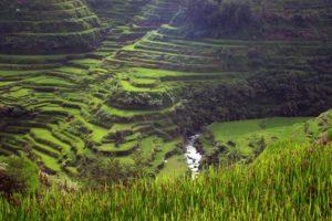 i-terrazzamenti-delle-filippine