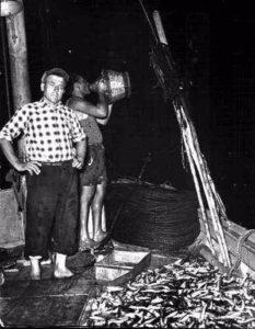 pescatori-di-alici