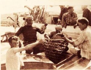 pescatori-ponzesi-di-aragoste-in-sardegna