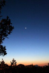 lultimo-quarto-di-luna