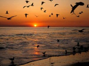 tramonto-fine-estate