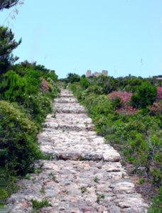 zannone-scalinata-di-pietra-dal-varo-verso-il-monastero-copia