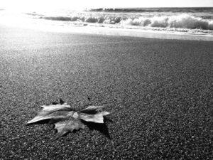 autunno-spiaggia-3