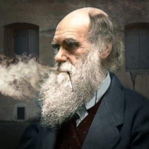 Darwin-BPK